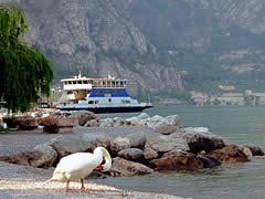 Mini-Kreuzfahrt auf dem Gardasee